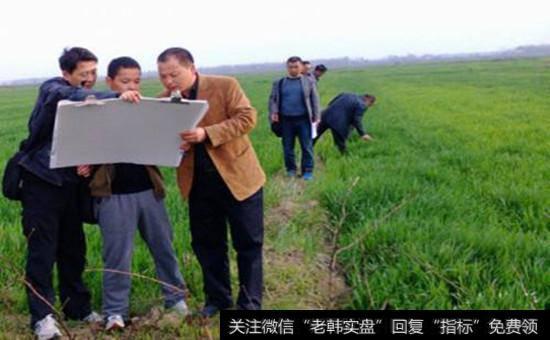 臨近年底經典句子_臨近年底農業主題集中發聲,土地確權概念股受關注!