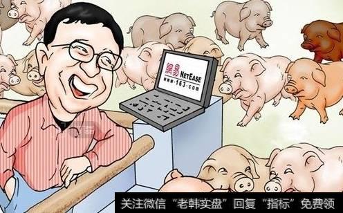 """【网易黑猪肉】网易猪肉跃升乌镇饭局主角 离创造""""价值""""还为时尚早"""