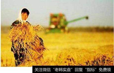 [中央一号文件乡村振兴战略]一号文件聚焦乡村振兴战略 农业板块迎来布局时点