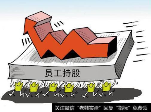 [哪个公司员工持股计划]公司提出员工持股计划,价格为现在股价的一半,股价买入大概为三十左右,能买吗?