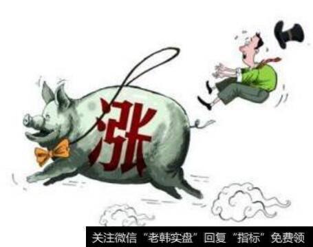 """【今日生猪价格】生猪会迎来新一轮""""牛市""""吗?"""